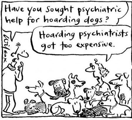 Pet Cartoon Dogs