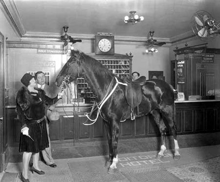 Auditorium Hotel Horse Texas 1920s