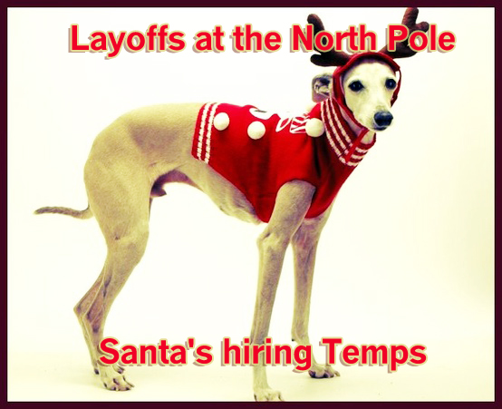Funny-holiday-dog-card-saying